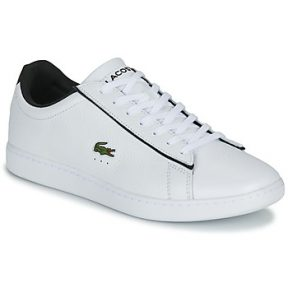 Xαμηλά Sneakers Lacoste CARNABY EVO 120 2 SMA