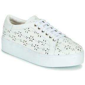 Xαμηλά Sneakers Cristofoli NALA