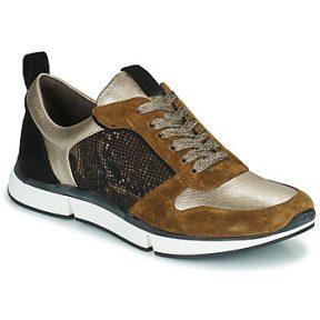 Xαμηλά Sneakers Adige VANILLE2 V3 GALAXY ONYX