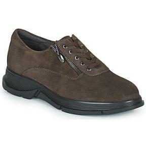 Xαμηλά Sneakers Scholl BRISTOL ZIP