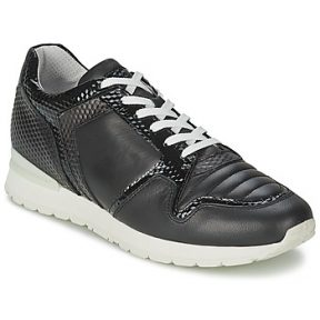 Xαμηλά Sneakers Bikkembergs KATE 420
